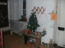 Inside the house, a tree in the kitchen