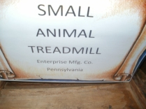 Small Animal Treadmill