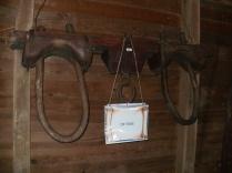 Ox Yoke artifact