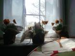 the windowsill in the farmhouse