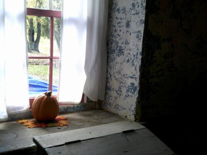 a living room window